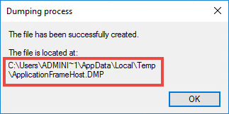 Path to the process dump file in Microsoft Windows 10