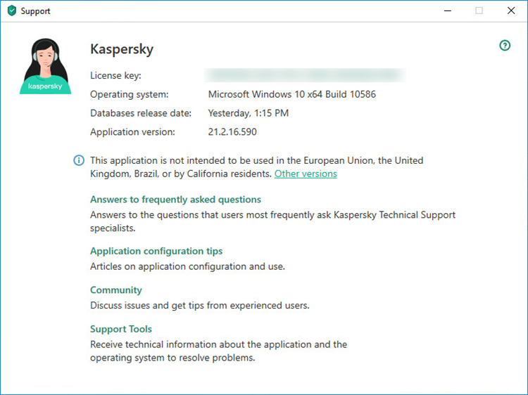 The support window in a Kaspersky application