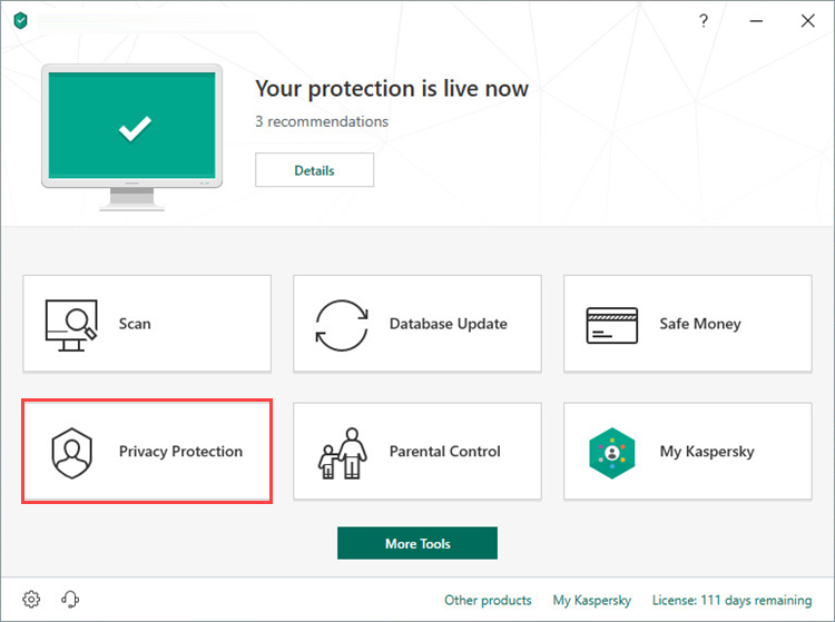 Opening the Privacy Protection section in Kaspersky Internet Security 19