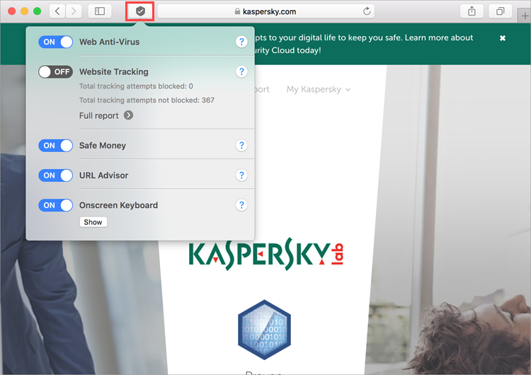 Features of the Kaspersky Security 19 browser extension
